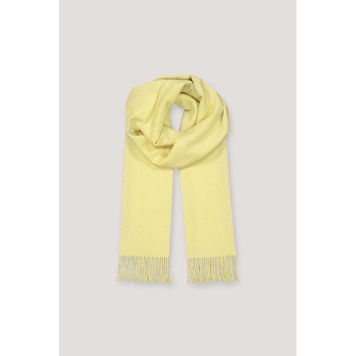 Accola scarf